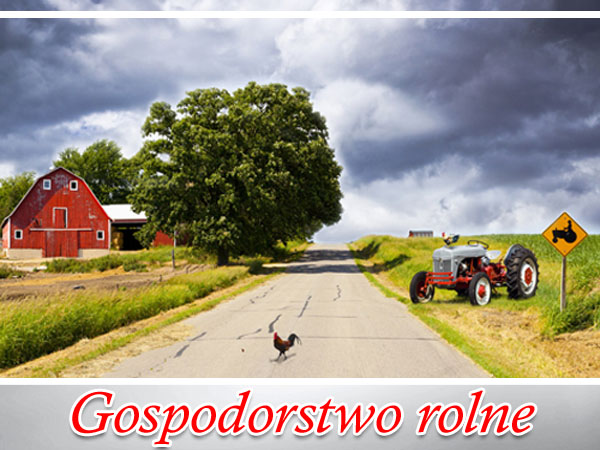 ubezpieczenia rolne